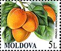 Stamps of Moldova, 032-09.jpg