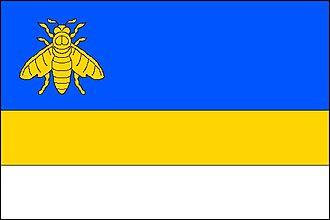 Staré Těchanovice - Image: Staré Těchanovice flag