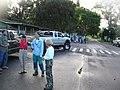 Starr-041106-0412-Jacaranda mimosifolia-koa planting-Ulupalakua-Maui (24351580269).jpg