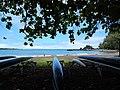 Starr-140726-1151-Terminalia catappa-habit view canoes and ocean-Hana Bay-Maui (24876909709).jpg