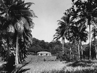 Edmund James Banfield - Residence of E. J. Banfield on Dunk Island, 1935