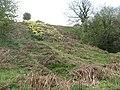 Steep slope, Hawkcraig - geograph.org.uk - 1455338.jpg