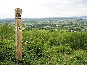 Stinchcombe Hill, near Dursley - geograph.org.uk - 449482.jpg
