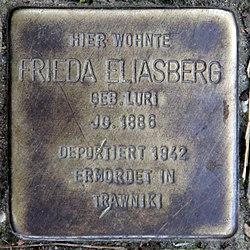 Photo of Frieda Eliasberg brass plaque