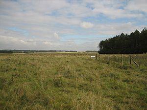 Stonehenge Landscape - The western end of the Stonehenge Cursus, part of the National Trust Stonehenge Landscape