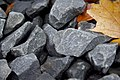 Stones And Leafs (52812434).jpeg