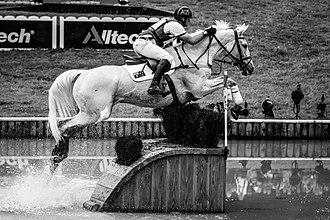 Stuart Tinney - Stuart Tinney riding Pluto Mio at the 2014 World Equestrian Games