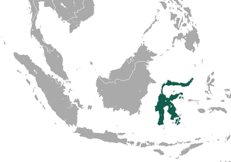 Sulawesi Bear Cuscus area.png