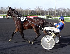 Sulky racing at Vincennes