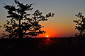 Sunset, Mapungubwe, Limpopo, South Africa (20550656381).jpg