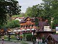 Szczawnica - panoramio (4).jpg