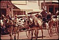 TEAM OF DONKEYS PULL A BUGGY DOWN THE MAIN STREET OF COTTONWOOD FALLS, KANSAS, NEAR EMPORIA, DURING A PART OF THE... - NARA - 557050.jpg