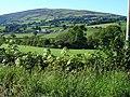 Tanat Valley - geograph.org.uk - 547357.jpg