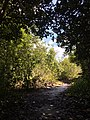Tangkiling Nature 01.jpg
