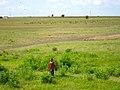 Tanzania (6693743715).jpg