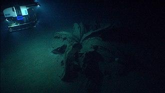 Asphalt volcano - Tar Lily, asphalt volcano, Gulf of Mexico, discovered in 2014