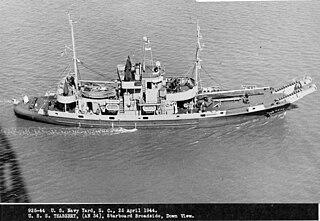 USS <i>Teaberry</i> (AN-34)