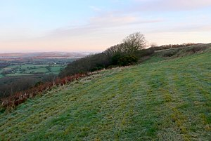 Telegraph Hill, Dorset - View east along the northern slope of Telegraph Hill overlooking the Blackmore Vale