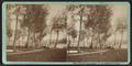 Ten Eycks Grounds & Cazenovia Lake, by Mather & Lyon.png
