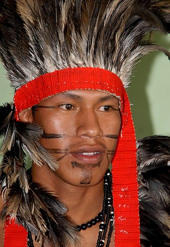 Brazilian indigenous man of Terena tribe Terena005.jpg