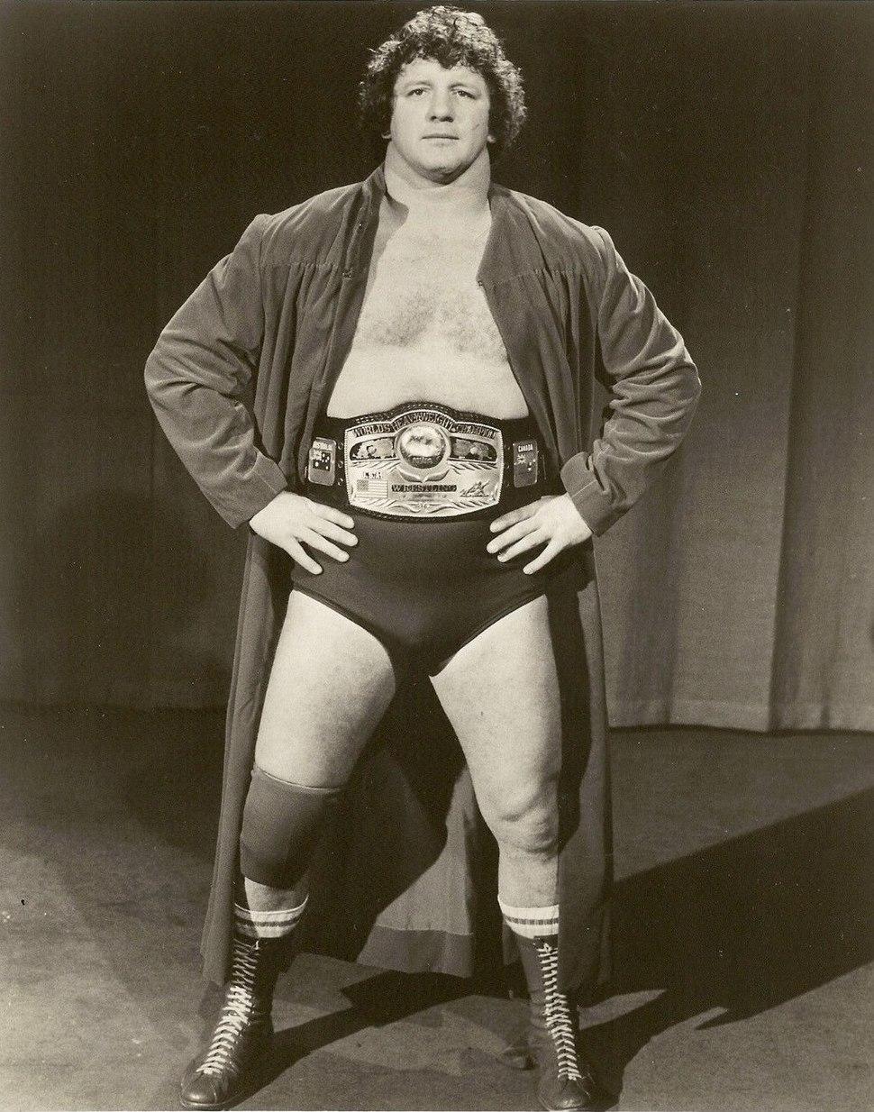 Terry Funk NWA Champion