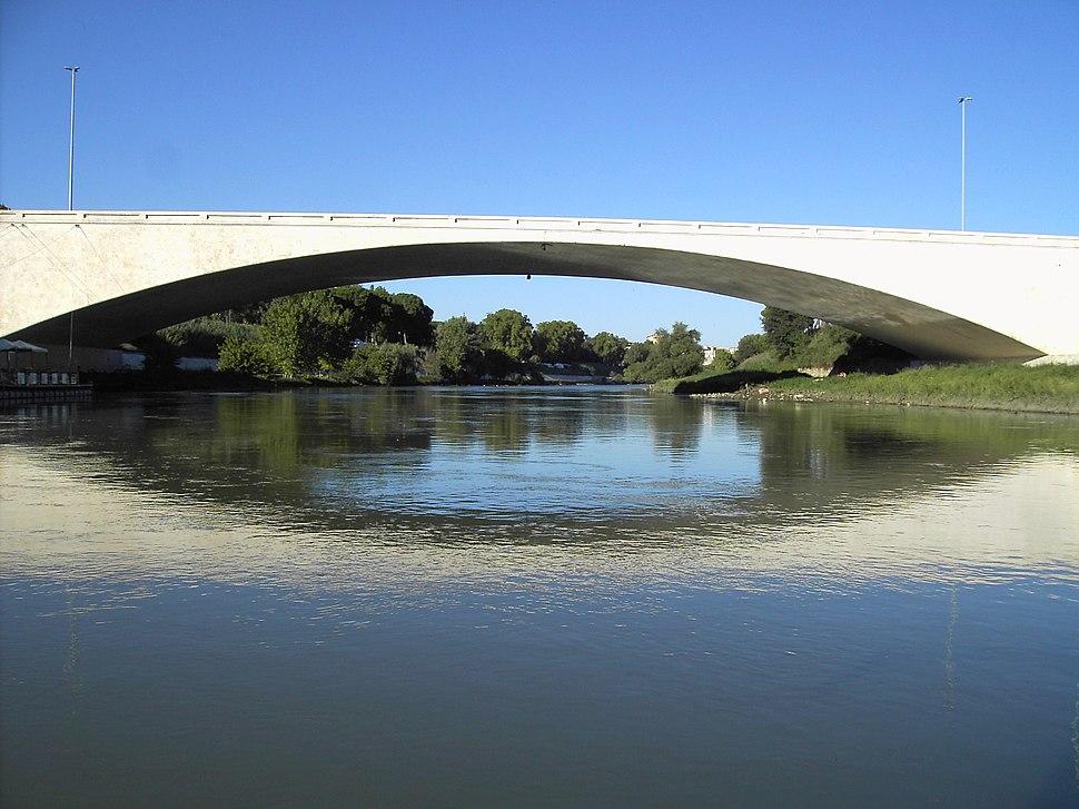 Tevere - Ponte Duca d Aosta 03
