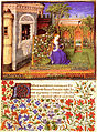 Théséide - Vidobo2617 53r - Emilie dans le jardin.jpg