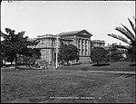 The (Australian) Museum, from Hyde Park, Sydney (4903830744).jpg