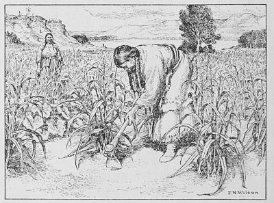 Image Result For Native American Farming