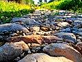 The Ancient Road to Al-Qubayba, Shfela, Israel הדרך לקוביבה, שפלת יהודה - panoramio (2).jpg
