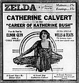 The Career of Katherine Bush (1919) - 5.jpg
