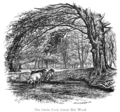 The New Forest its history and its scenery - page 020.png