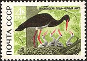 The Soviet Union 1969 CPA 3794 stamp (Black Stork).jpg