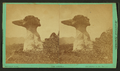The Sphynx. (View of rock formations.), by Chamberlain, W. G. (William Gunnison).png