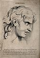 The face of a young man in a state of attention. Engraving b Wellcome V0009328.jpg