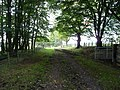 The old road - geograph.org.uk - 985561.jpg