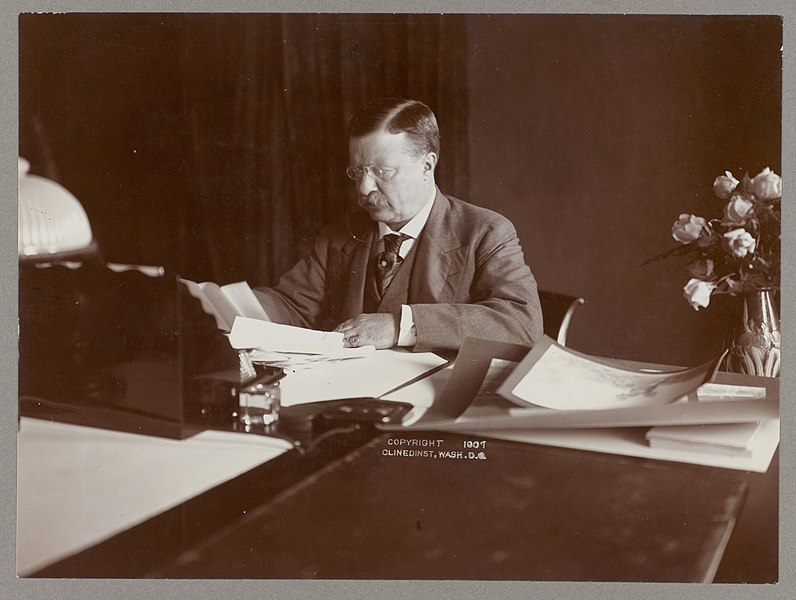 File:Theodore Roosevelt seated at desk, reading, roses in vase at right LCCN2009633129.jpg