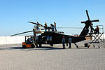 They fly, but can they float? Air Cavalry Brigade readies their birds for b DVIDS68459.jpg