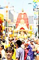 Toronto 39th Annual Indian Festival (1).jpg