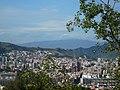 Torre Baró - Collserola des del carrer Gran Vista al turó de la Rovira P1500848.jpg