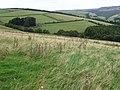 Towards Hursthead Cote - geograph.org.uk - 1465613.jpg