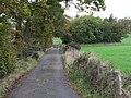 Towards St Brendan's Well - geograph.org.uk - 269885.jpg