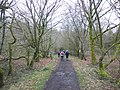 Track through the woods, below North Hill - geograph.org.uk - 1774279.jpg