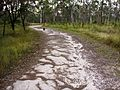 Trail in Trotter Park - panoramio.jpg