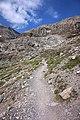 Trail to Lämmerenhutte.jpg