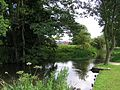Train coming into Arlesey Station from the River Hiz - August 2009 - panoramio.jpg