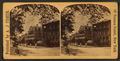 Tree-lined residential street, from Robert N. Dennis collection of stereoscopic views.png