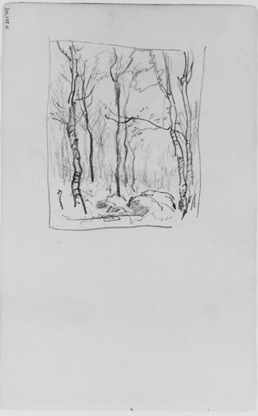 File:Trees and Rocks in a Forest (from Sketchbook) MET 263355.jpg