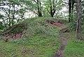 Tremsin, forest (6).jpg