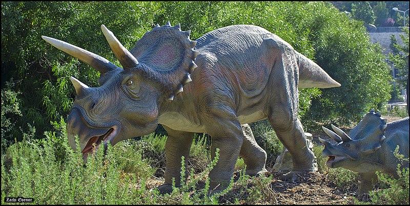 Dinosaurios-triceratops-habitad-Norteamérica